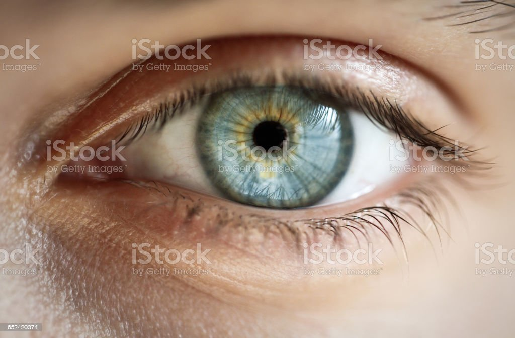 best eyes stock photos