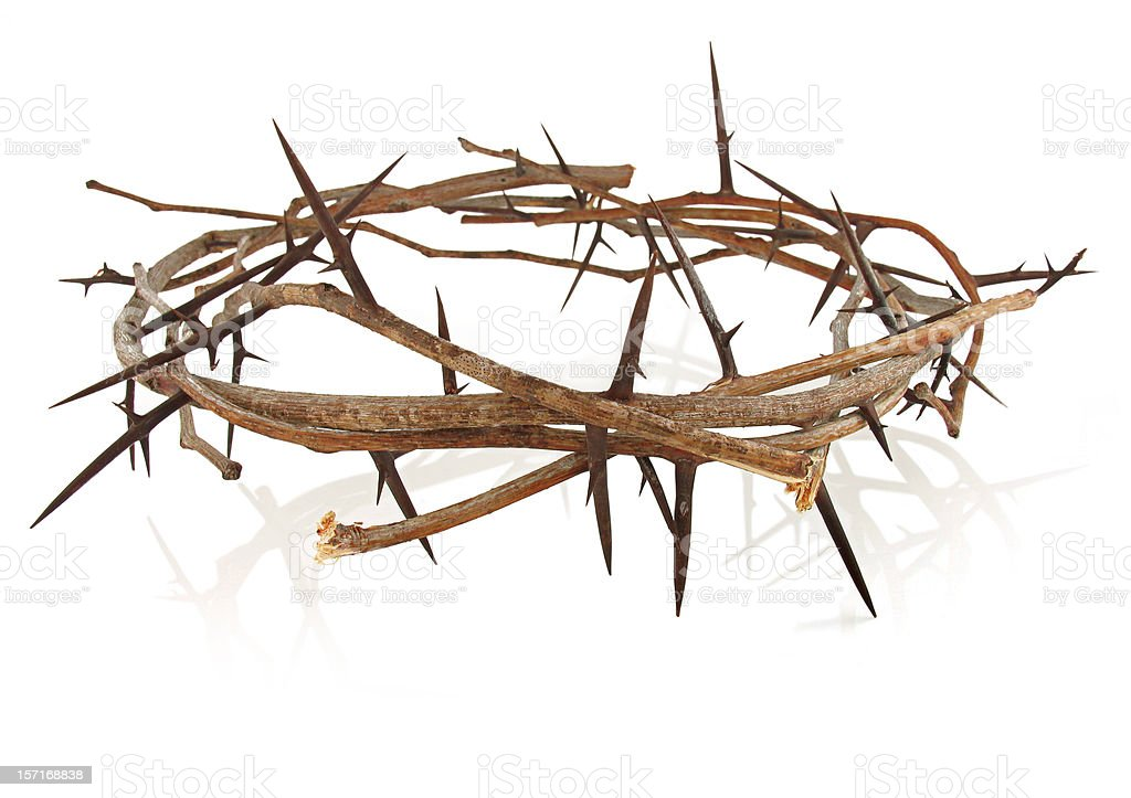 Crown Of Thorns Stock Photo - Download Image Now - iStock