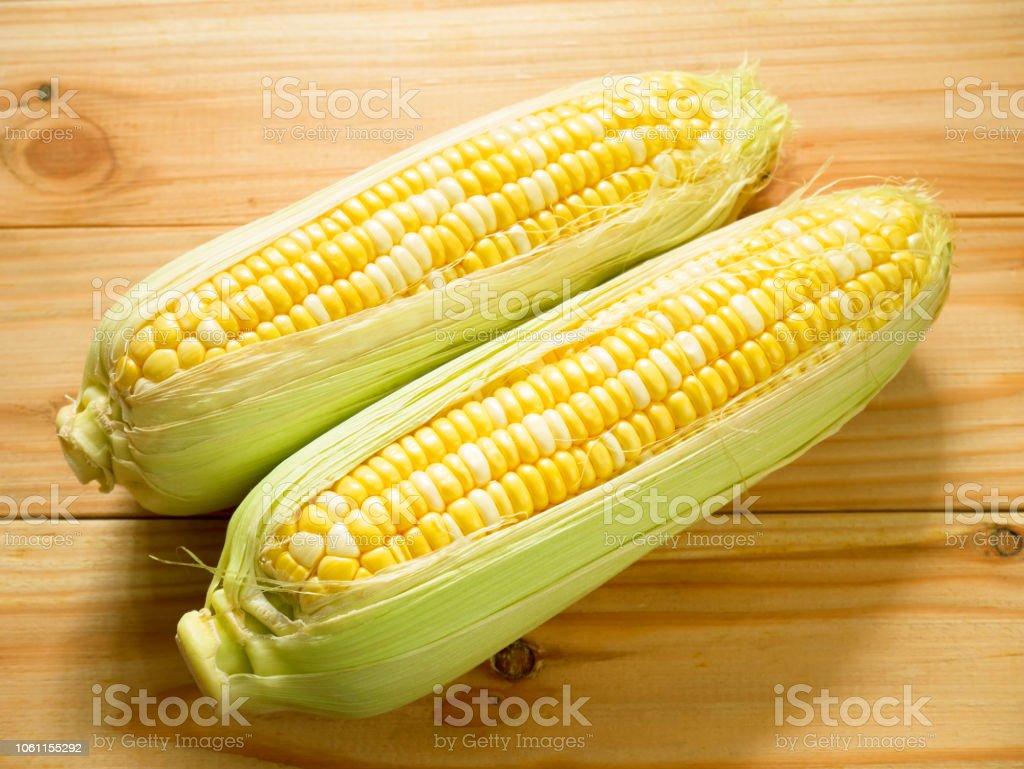 best bicolor corn stock