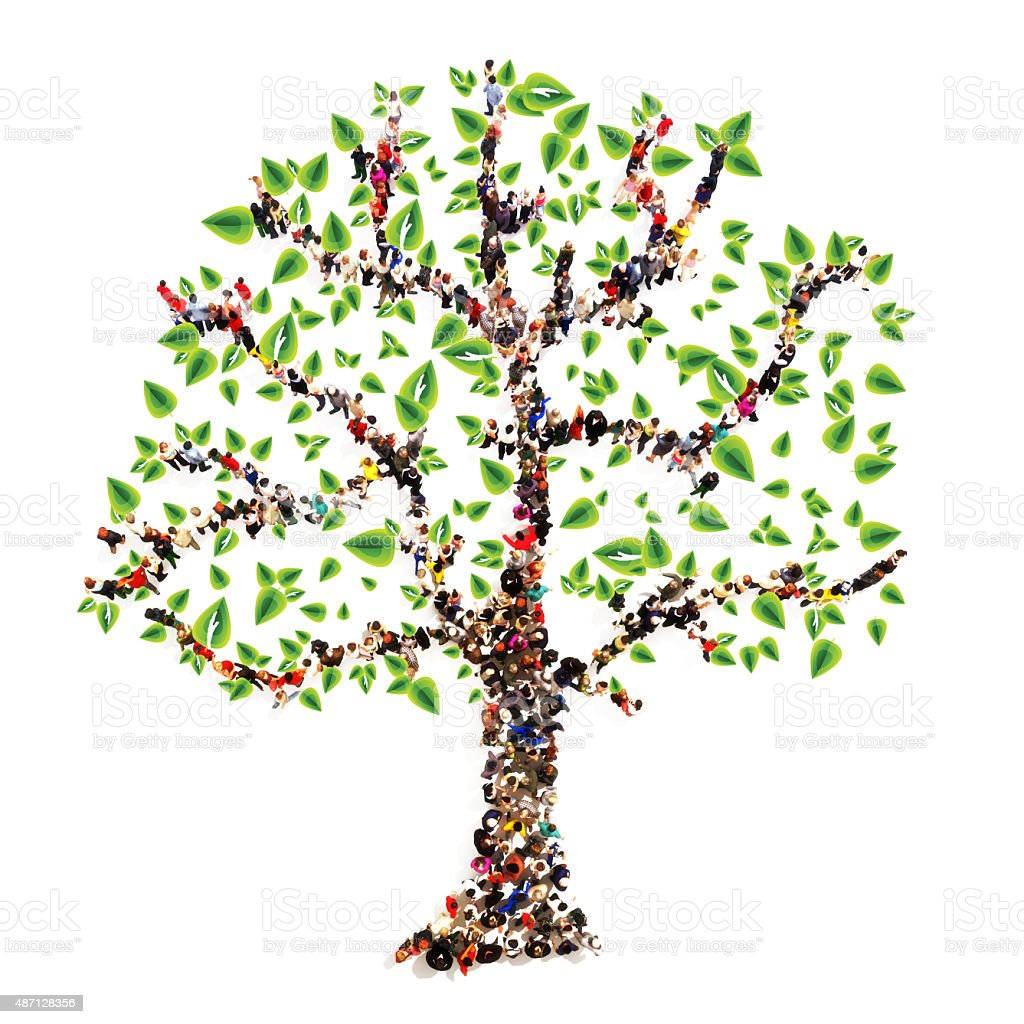 best family trees stock