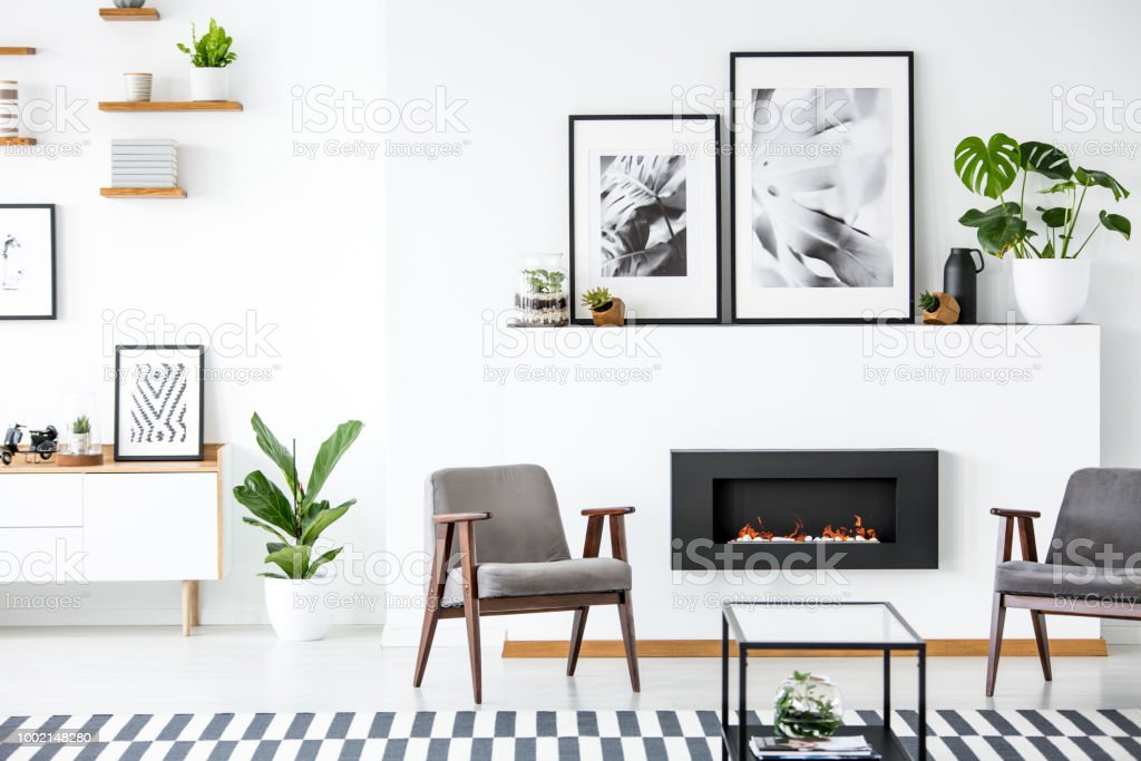 grey modern armchairs lumbar pillow for office chair fireplace between in living room interior with posters and plants real photo stock image