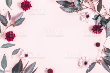 Flowers Composition Eucalyptus Leaves And Pink Flowers On Pastel Pink Background Mothers Day Womens Day Concept Flat Lay Top View Copy Space Stock Photo Download Image Now iStock