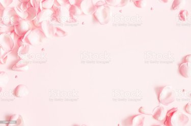 Flowers Composition Rose Flower Petals On Pastel Pink Background Valentines Day Mothers Day Womens Day Concept Flat Lay Top View Copy Space Stock Photo Download Image Now iStock