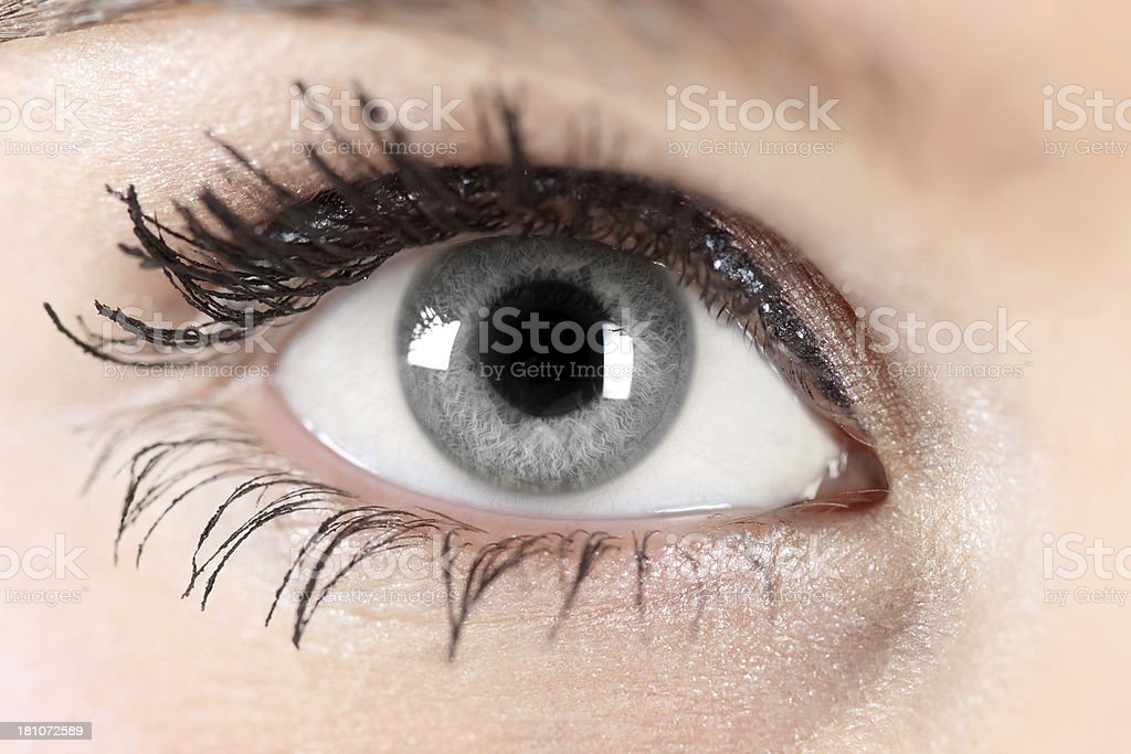 Best Gray Eyes Stock Photos Pictures & Royalty-Free ...