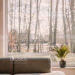 Graue Lounge Stehen Im Wohnzimmer Interieur Mit Grossen Fenster Und Grune Frische Pflanze Auf Der Fensterbank Platziert Stockfoto Und Mehr Bilder Von Dekoration Istock