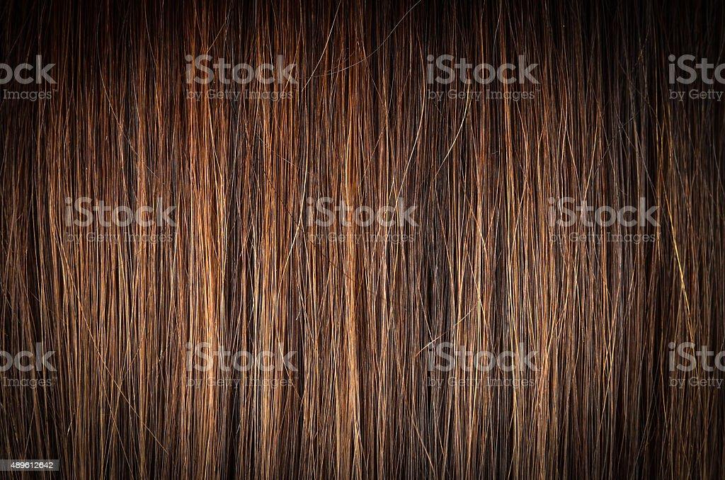 royalty free hair texture