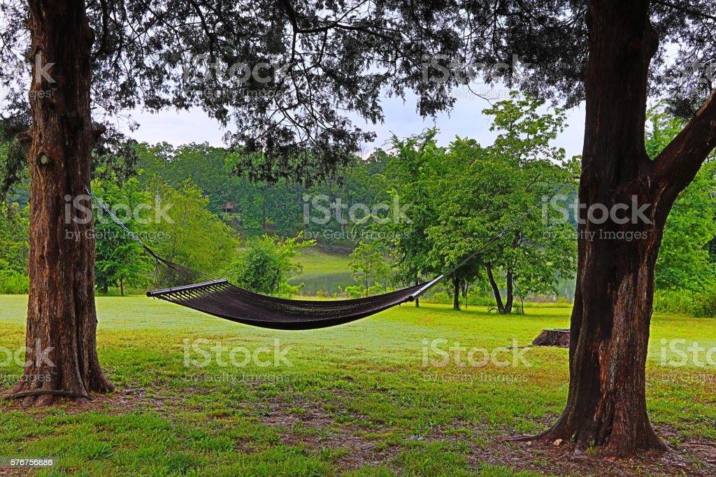 hammock between trees stock