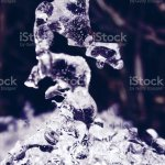 Ice Whimsical Natural Sculpture Frozen Ice Sculpture Looks Like A Sea Horse Stock Photo Download Image Now Istock