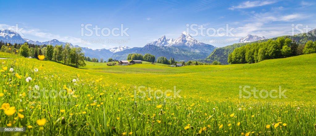 idyllic landscape in alps