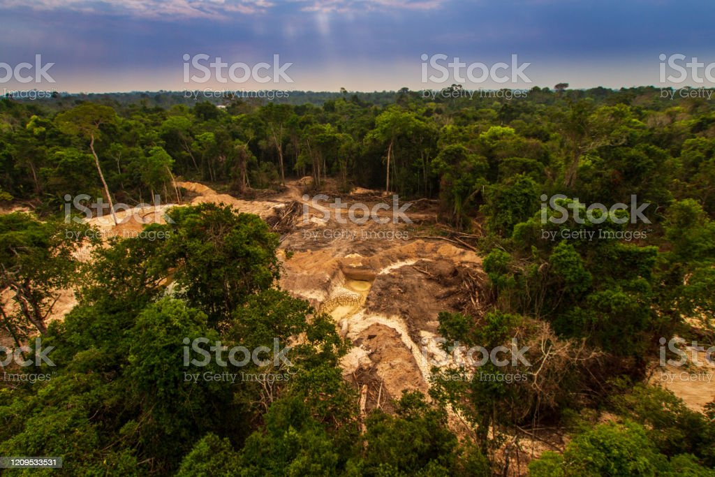 According to the world carfree. Illegal Mining Causes Deforestation And River Pollution In The Amazon Rainforest Near Menkragnoti Indigenous Land Para Brazil Stock Photo Download Image Now Istock