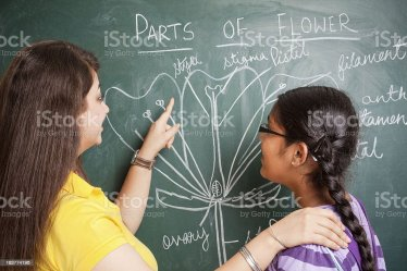 Indian School Teacher Showing Flowers Chalk Drawing To Girl Student Stock Photo Download Image Now iStock