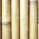 Indonesia Bali Ubud Bamboo Fencing Stock Photo Download Image Now Istock