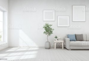 indoor table plant background coffee wall window living lounge wooden bright floor modern concrete glass furniture near scandinavian flooring cafe