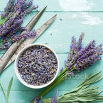 Lavender Wreath Making Diy Project Stock Photo Download Image Now Istock
