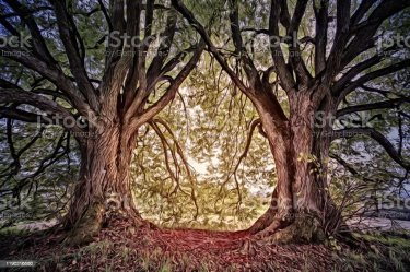 Magical Mystical Fantasy Enchanted Forest Art Graphic Stock Photo Download Image Now iStock