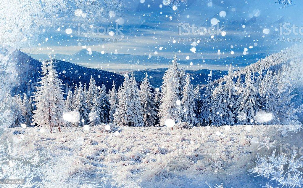 Magico Albero Invernale Coperto Di Neve Sfondo Con Un
