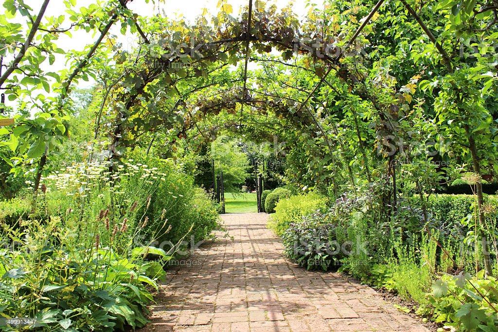 Metal Pergola Arch Espalier Apple Trees Grape Vines Brick
