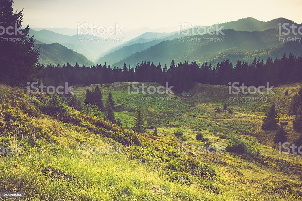 royalty free landscapes