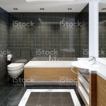 Modern Bleack And White Designer Bathroom With Black Marble Shower Tiling Stock Photo Download Image Now Istock