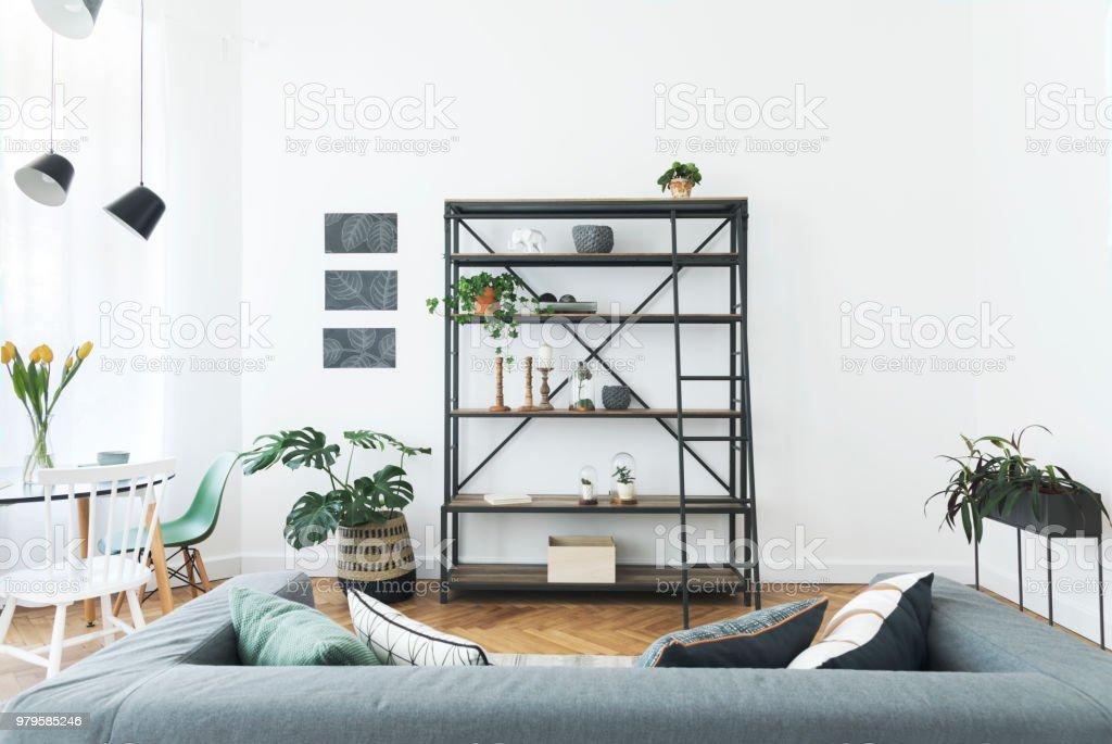 https www istockphoto com fr photo int c3 a9rieur moderne de salon avec biblioth c3 a8que canap c3 a9 c3 a9l c3 a9gant et plante murs blancs gm979585246 266180120