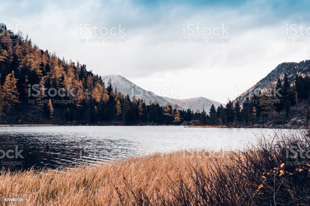 Special weather statement in effect until 4:00 pm pst. Mountain Lake With Reflection In The Mirrored Surface Of The Rocks In Cloudy Rainy Weather The Beauty Of The Mountain Country And Nature Stock Photo Download Image Now Istock