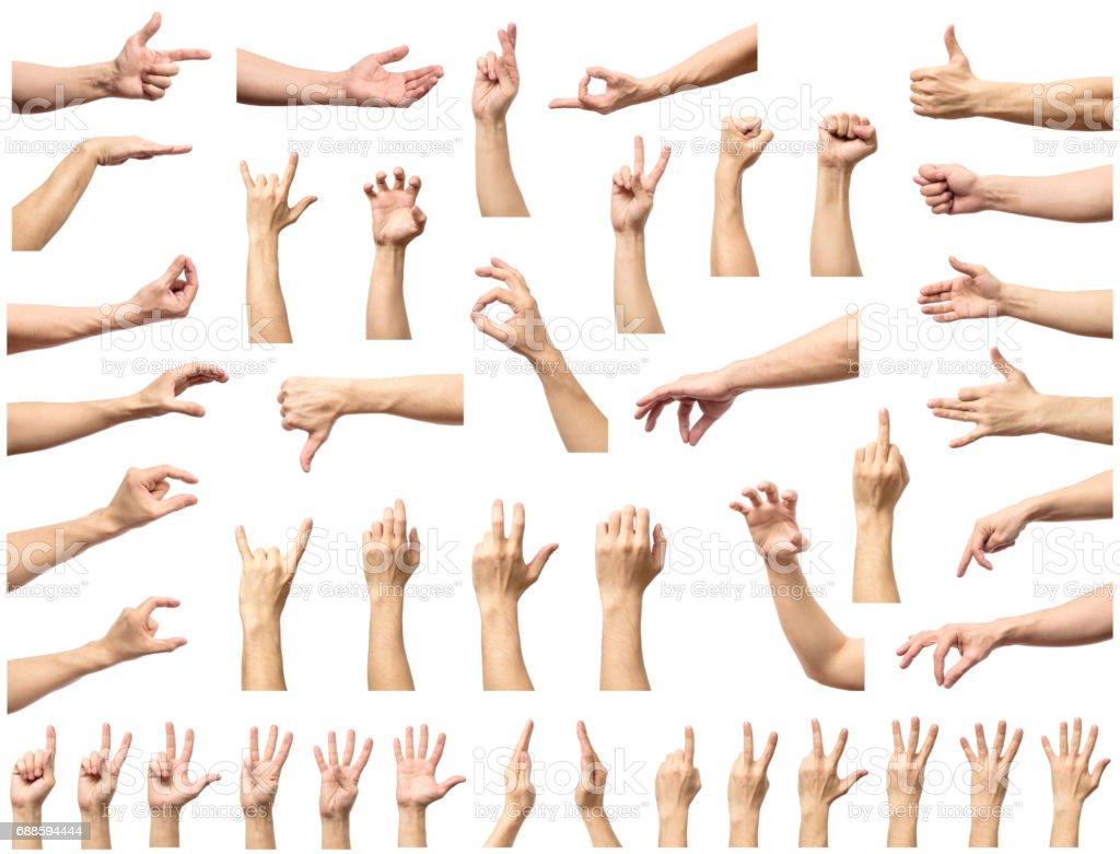 multiple male caucasian hand