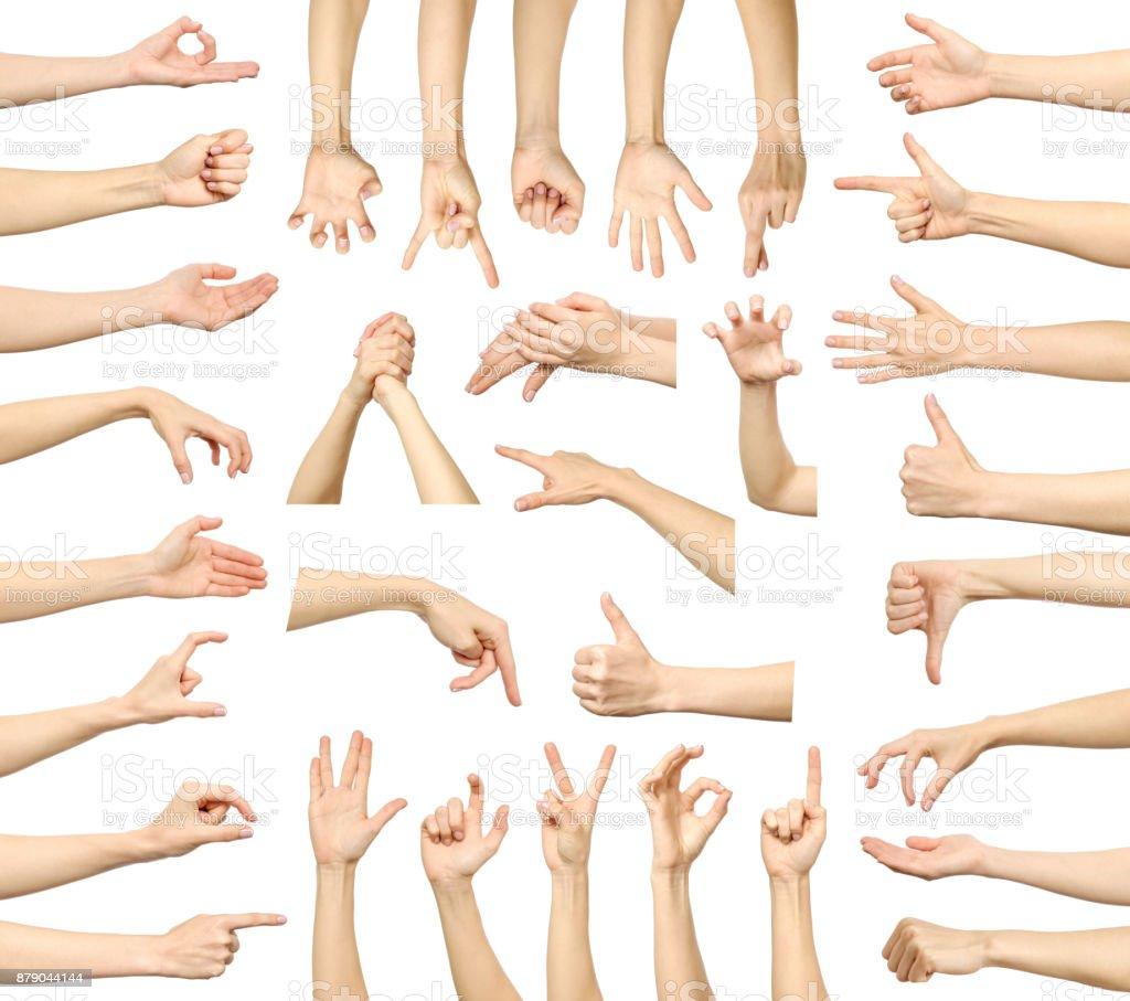 multiple womans hand gestures