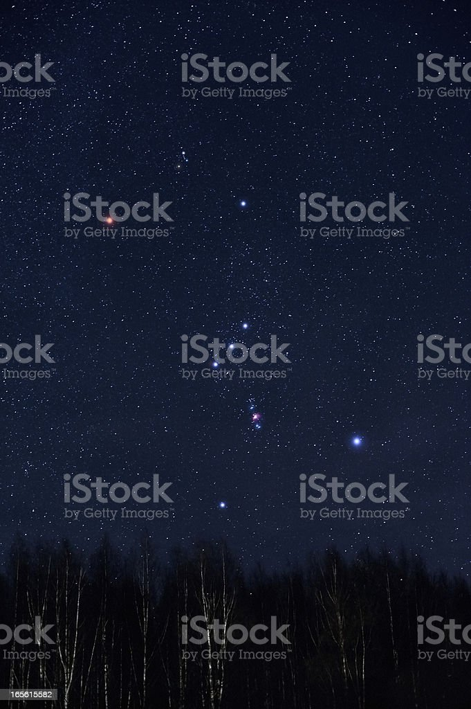 Best Orion Constellation Stock Photos Pictures Amp Royalty