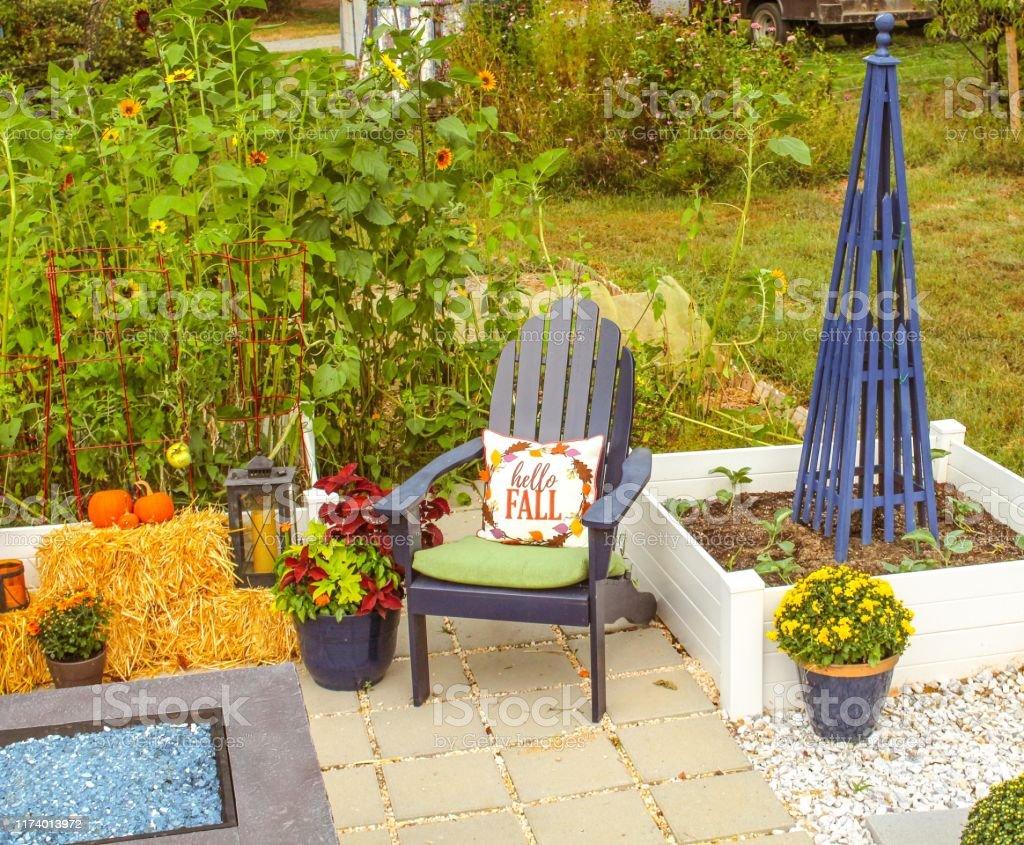outdoor patio with raised beds planted with cool seasonal vegetables and decorated for autumn andirondack chairs with fire pit stock photo download image now istock