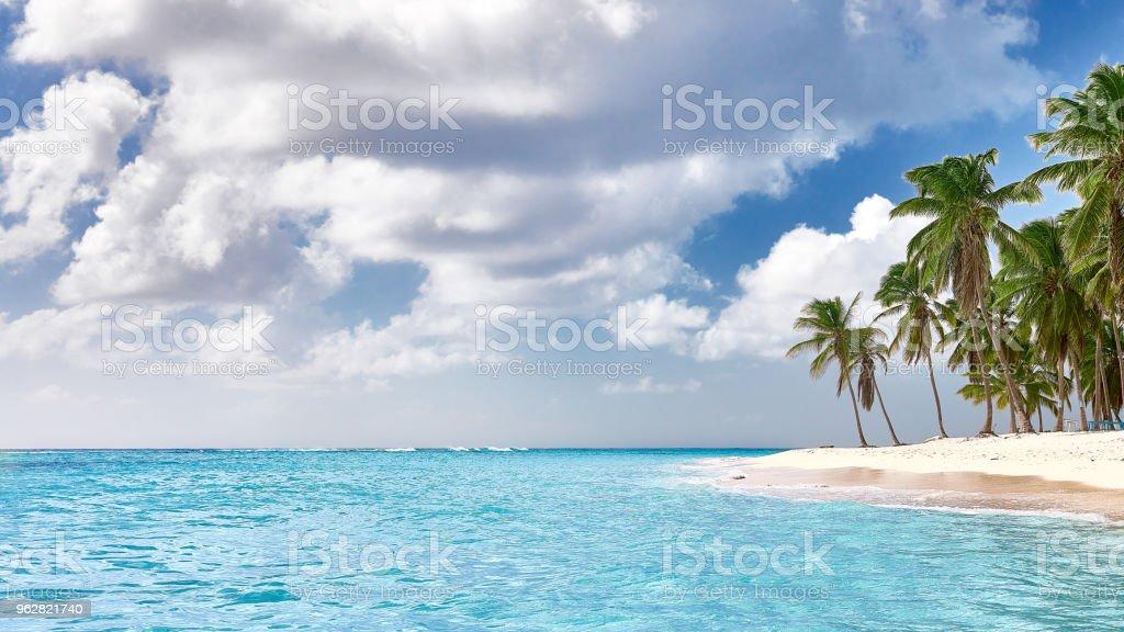 https www istockphoto com fr photo plage paradisiaque paradisiaque sable blanc plage palmiers et une eau limpide gm962821740 262975554
