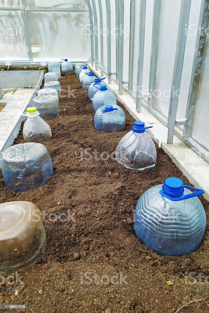 https www istockphoto com fr photo planter des graines dans une serre ou un tunnel fermant une bouteille en plastique gm1148901076 310424998