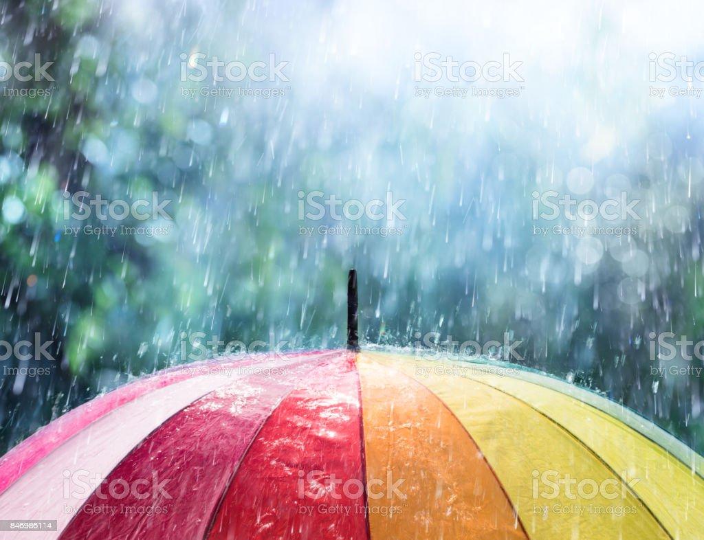 best umbrella stock photos