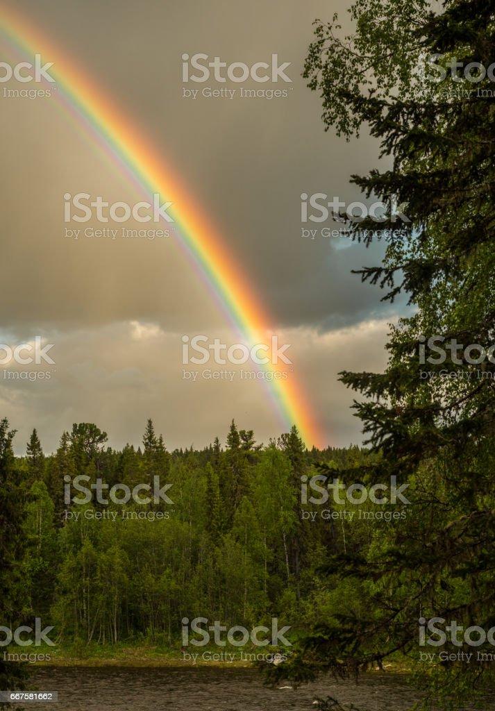 Anmäl dig till vårt nyhetsbrev & Regnbage Ovan Taiga Skog Foton Och Fler Bilder Pa Berg Istock
