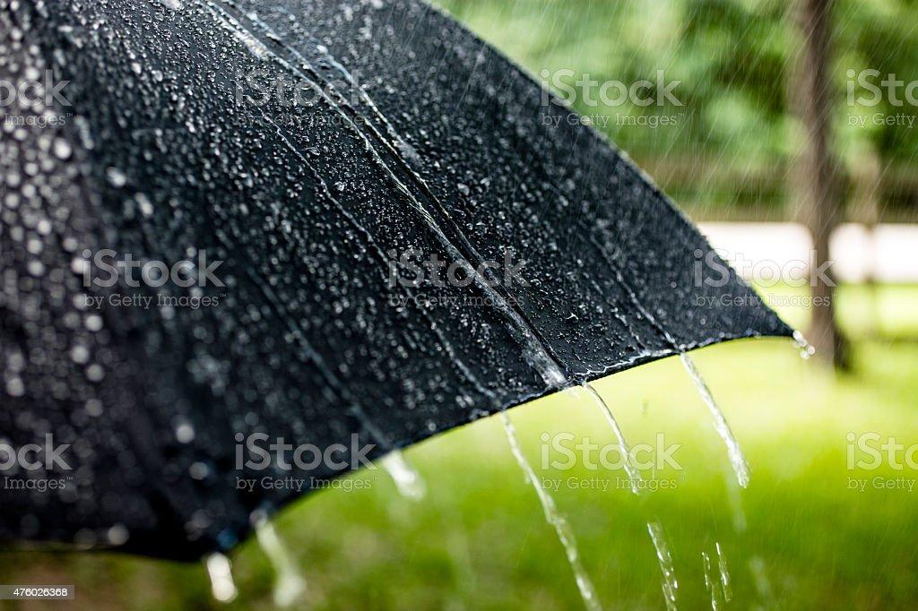 rainy day raindrops falling