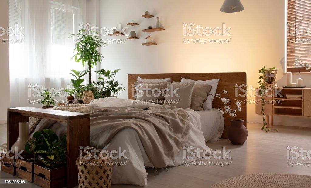 photo libre de droit de photo reelle dun interieur de chambre romantique avec un lit double avec draps des plantes et des etageres en bois banque d images et plus d images libres de
