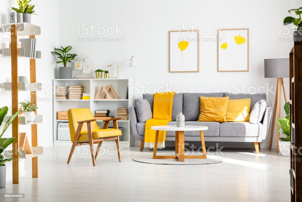 yellow gray and white living room transitional furniture real photo of a scandi interior with walls flower posters plants stock image