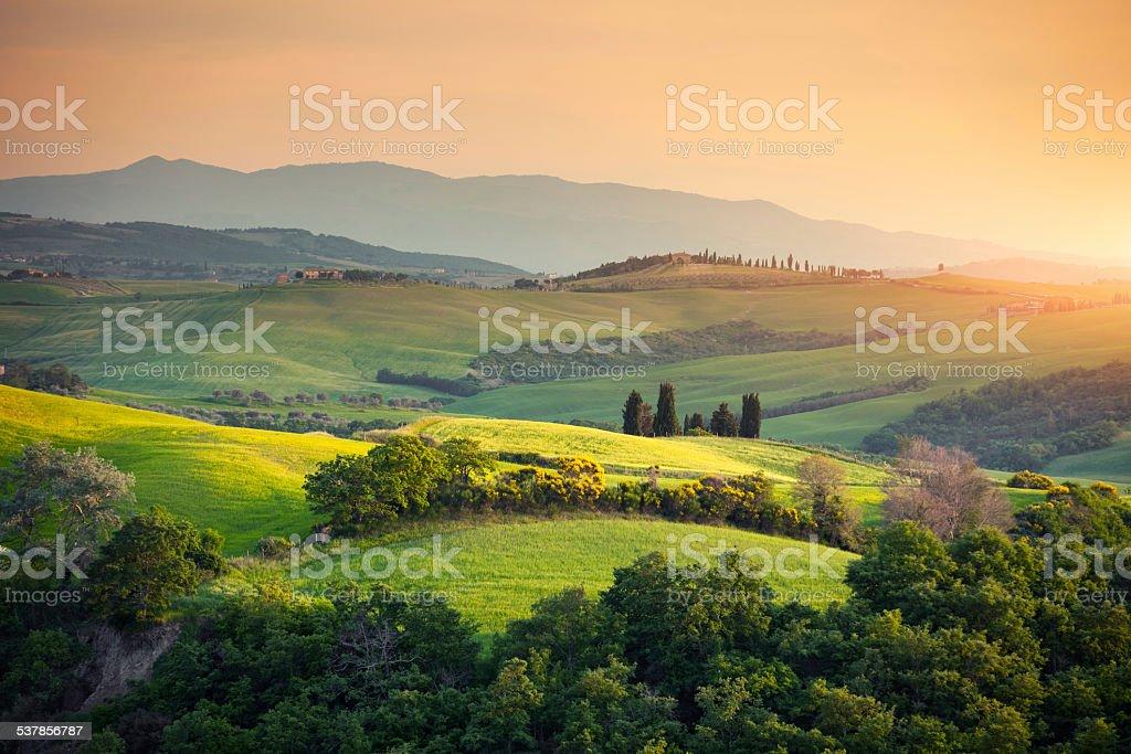 Toscana Paesaggio Collinare  Fotografie stock e altre