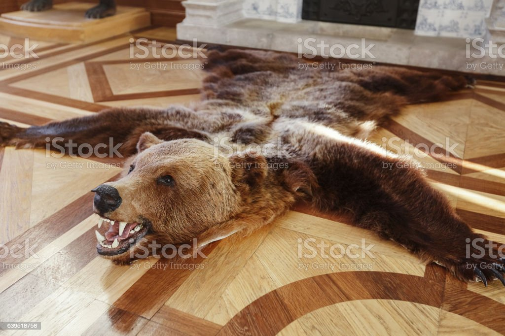 https www istockphoto com fr photos tapis ours