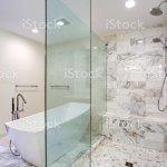Sleek Bathroom With Freestanding Bathtub And Walk In Shower Stock Photo Download Image Now Istock