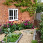 Small Courtyard Garden Uk Stock Photo Download Image Now Istock