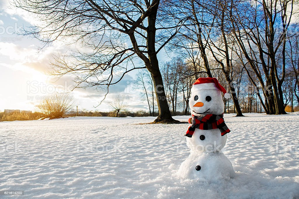 Smiling Snowman Picturesque Winter Landscape Holiday Mood Stock Photo - Download Image Now - iStock