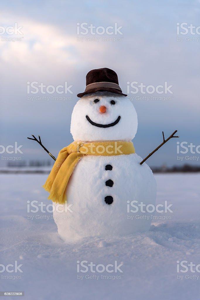 Snowman Stock Photo - Download Image Now - iStock