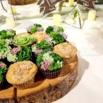 Succulent Wedding Cupcakes On Wood Stock Photo Download Image Now Istock