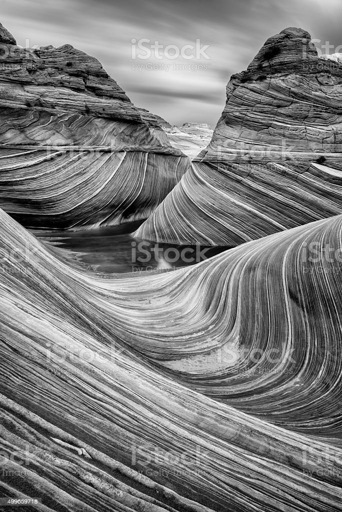 Black And White Pictures Images and Stock Photos  iStock