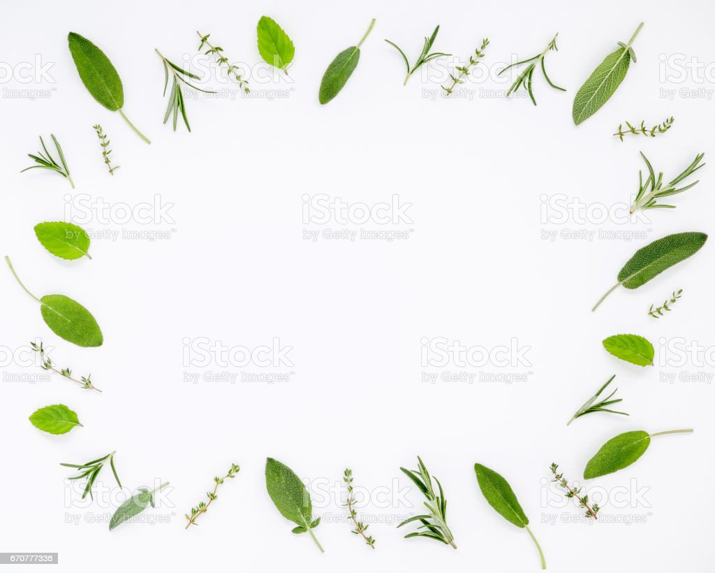 hight resolution of various fresh herbs from the garden rosemary sage thyme and peppermint leaves flat lay with central copy space on white wooden background stock image