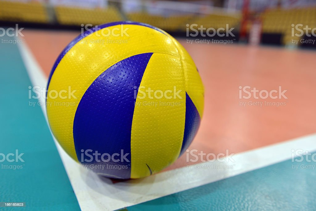 Top 60 Indoor Volleyball Stock Photos Pictures and