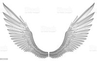 White Angel Wings Stock Photo & More Pictures of Angel ...
