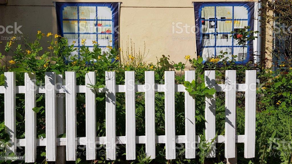 photo libre de droit de cloture en bois peinte en blanc devant le mur jaune de la facade de maison avec deux fenetres fausses lit fleuri de fleurs colorees se developpant derriere