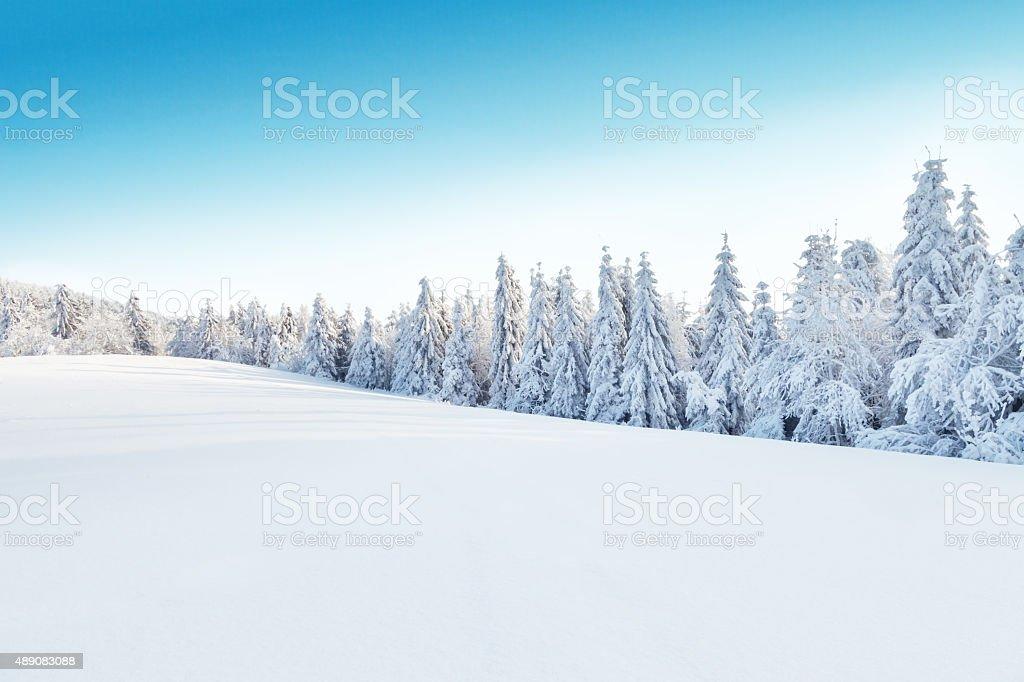 royalty free snow