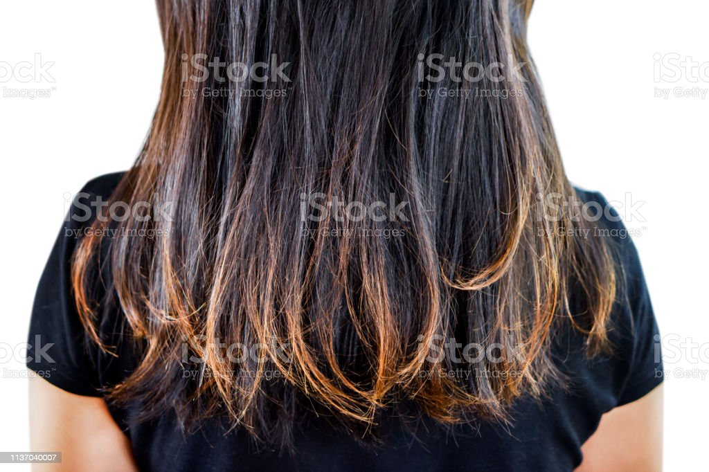Woman Damaged Hair Split Ends Isolated On White Background ...